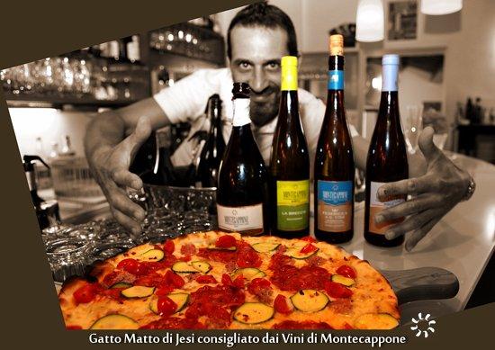 Gatto_Matto_Jesi_Montecappone_01