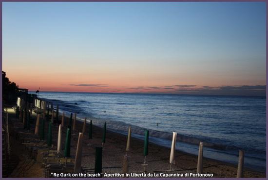 Re_Gurk_on_the_beach_11
