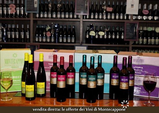 Vini_Montecappone_offerte_21
