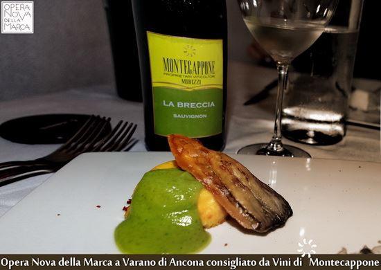 Opera_Nova_della_Marca_Varano_Ancona_Vini_di_Montecappone_1_