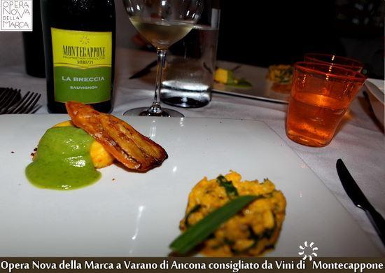 Opera_Nova_della_Marca_Varano_Ancona_Vini_di_Montecappone_2_