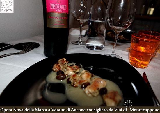 Opera_Nova_della_Marca_Varano_Ancona_Vini_di_Montecappone_4_