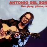 Antonio Del Sordo Minonna Jesi 2017