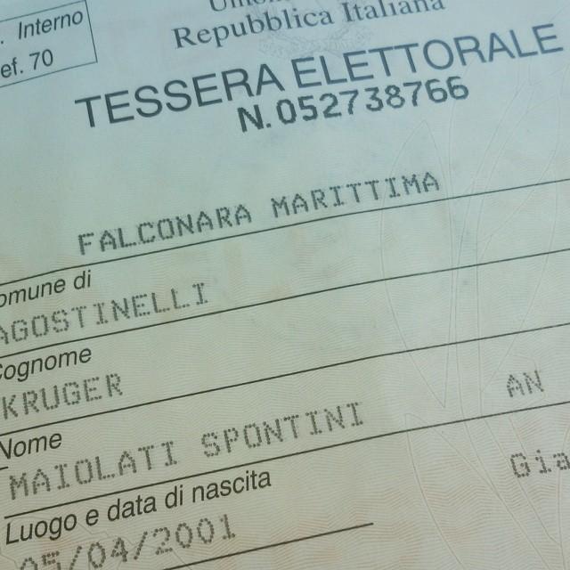 votare a Falconara Marittima
